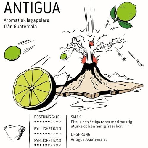 Antigua - kaffe