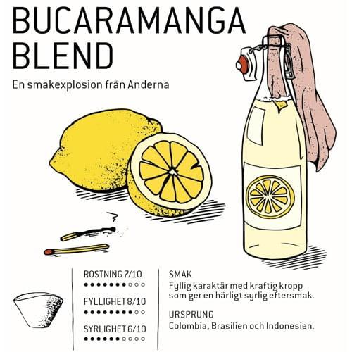 Bönorna som används i Bucaramanga Blend har mognat långsamt vilket ger kaffet en karaktär som sticker ut från mängden.